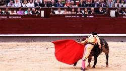 马德里娱乐-拉斯本塔斯斗牛场
