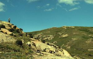 【乌兰察布图片】一个人在辉腾锡勒草原