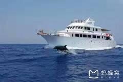 埃及土耳其十八天探险之旅...埃及红海风景随拍
