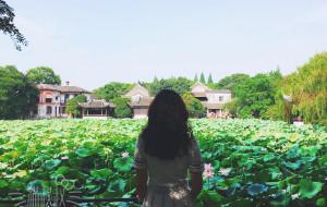 【湖州图片】轩窗一日 盈盈一点 - 季夏南浔 [2017.7.16]