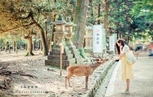 【本州图片】日本-抹茶绿的夏天 逛在东京 玩在关西 如画镰仓