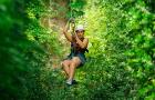 泰國芭提雅曼谷叢林飛躍長臂猿一日遊(曼谷區含接送)