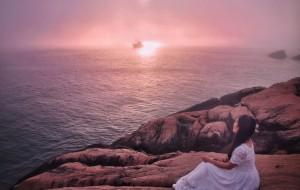 【东极岛图片】【献给东极岛】在可能与不可能之间,石上花开