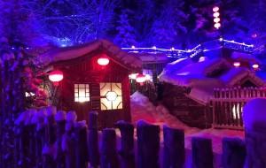 【太阳岛图片】去东北看雪      一 雪乡行