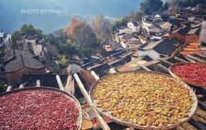 【篁岭村图片】从杭州到篁岭,在初冬的季节,赴一场迟来的深秋之约