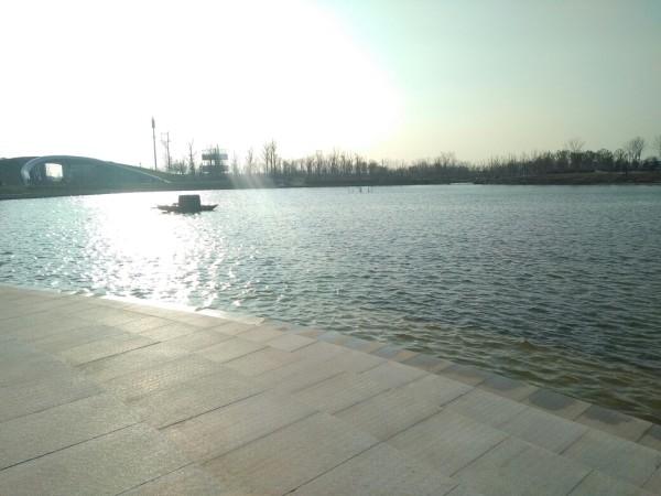 射阳千鹤湖