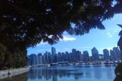 温哥华一游(3):城内景点