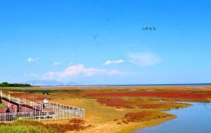 【秦皇岛图片】北戴河有片红海滩