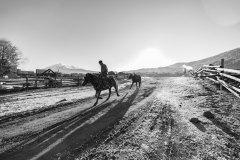 新疆:鲜衣怒马,彼时少年(克拉玛依、阿勒泰、布尔津、禾木、喀纳斯、白哈巴自驾)