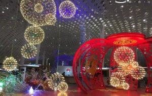 【悉尼图片】2017年春节假期15天澳洲行----福州--->深圳飞悉尼(1月29日--31日)