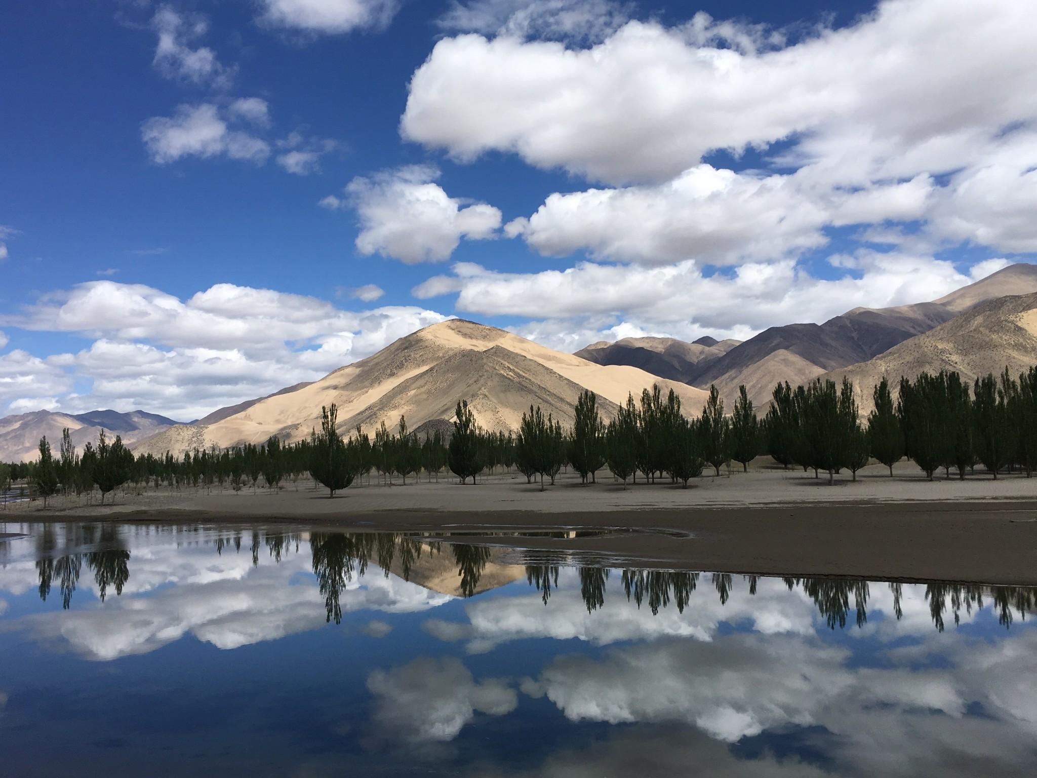 18 这15天是从西藏拉萨到云南普洱 路程: 拉萨—林芝—鲁朗—波密—然