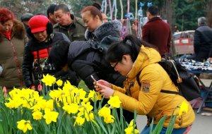 【都江堰图片】大美都江堰之六 ——春台盛会