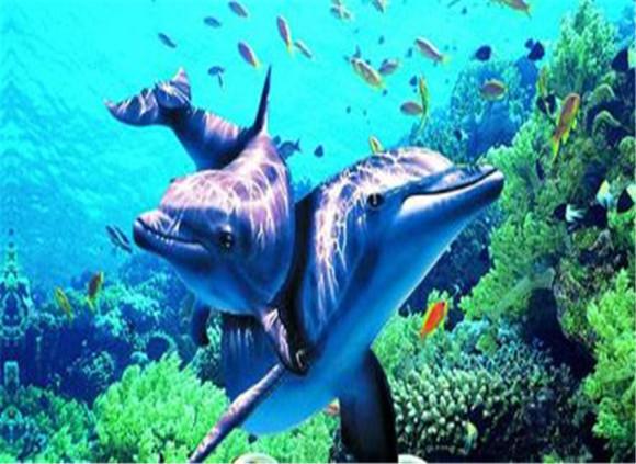 海洋公园 南宁海底世界电子门票