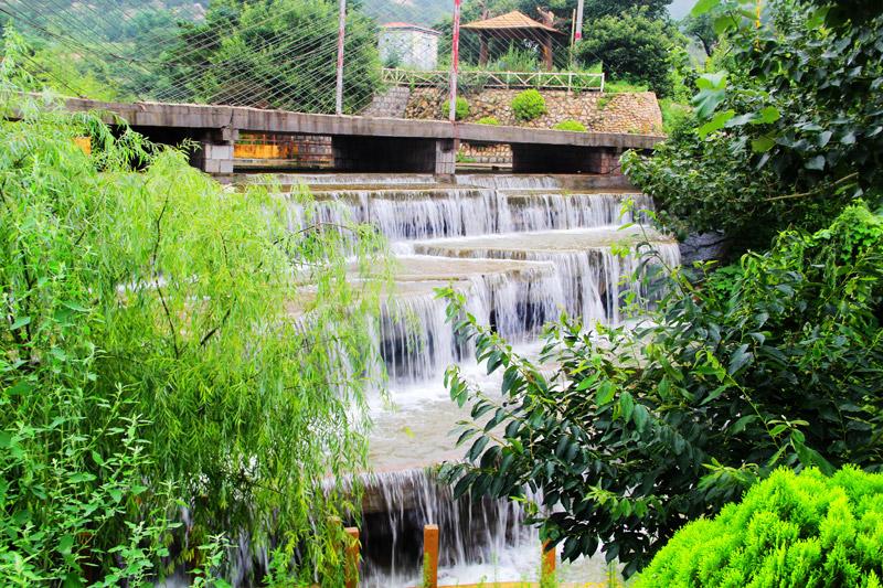 青岛茶山风景区门票可选购玻璃天桥 (大门票提前1天预订/含玻璃桥提前