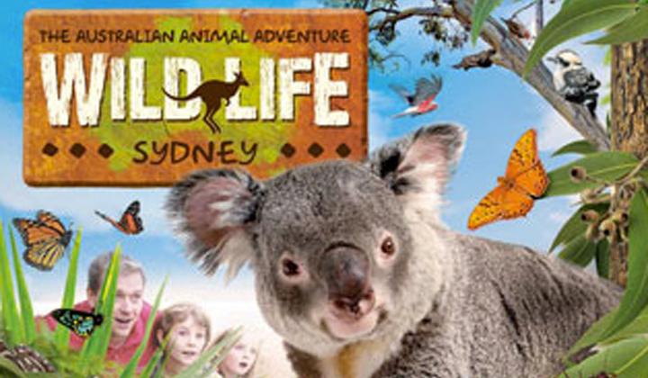 悉尼情人港野生动物园门票wild life(塔斯马尼亚恶魔馆 考拉馆 夜间