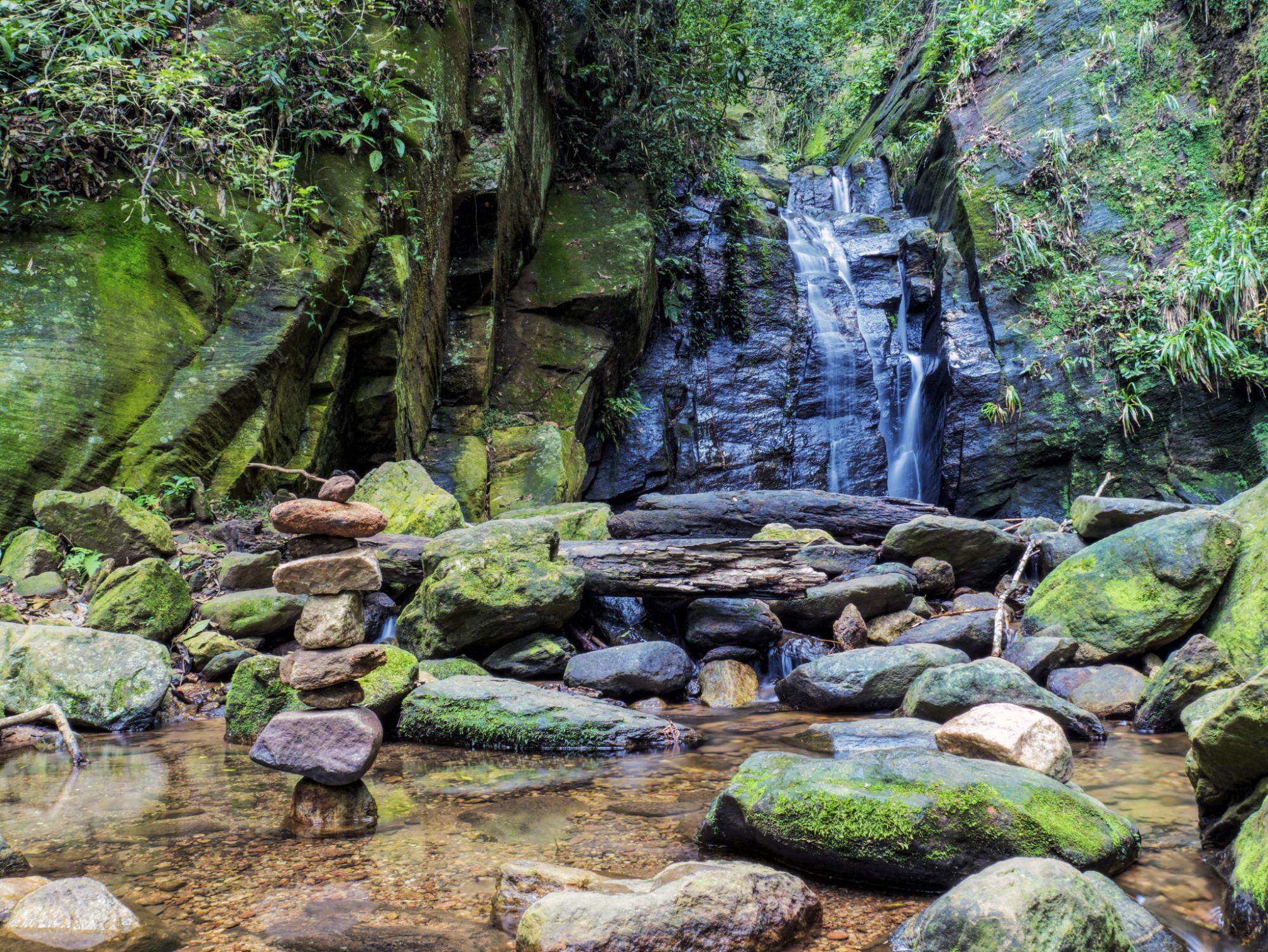 巴西·里约 植物园 国家森林公园 一日游(含英文导游