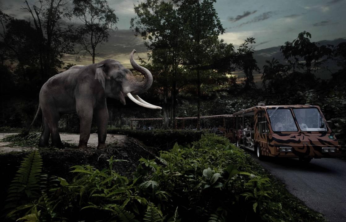 新加坡夜间野生动物园是世界上首个专为夜行动物开设的动物园,生活着