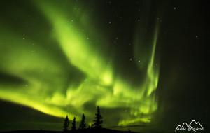 【温哥华图片】伴随着极光,狼嚎震彻山谷(史上最全加拿大育空+阿拉斯加东南部自驾游记攻略)(含全程GPS)