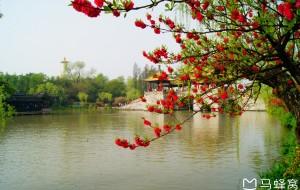 【扬州图片】2018年图记----春天的故事之漫行花海