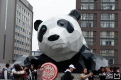 猪先森&驴小姐【成都】逃离冬天的三日游,看如何在春节避开众多游客