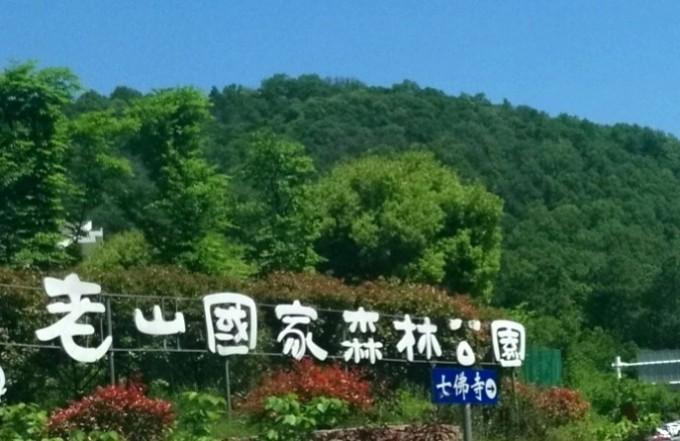 南京老山国家森林公园    图片