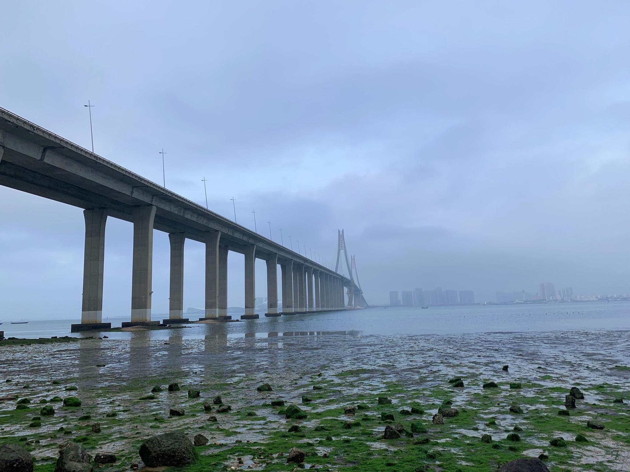 ·【中国大陆最南小城】在湛江看海环岛过最暖春节_游记
