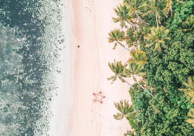 斐济 - 一半的森林,一半的海洋