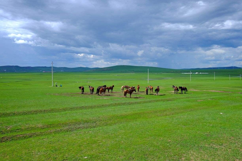走自己的路游呼伦贝尔 内蒙古草原之行
