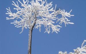 【衡阳图片】狂风暴雪与明媚阳光的瞬间切换--衡山两日游