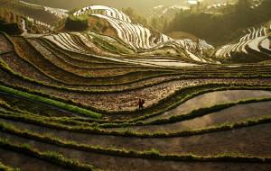 【龙胜图片】波澜壮阔的大瑶寨金坑梯田——龙胜