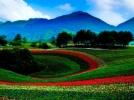重庆市红池坝国家森林公园