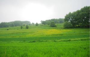 【崇礼图片】2012年7月7日-8日崇礼喜鹊梁--红花梁