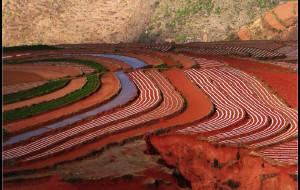 【东川图片】壮美的土地 斑斓的色彩——东川红土地