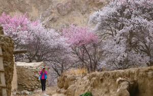 【南疆图片】2014年4月 南疆冰川杏花之旅