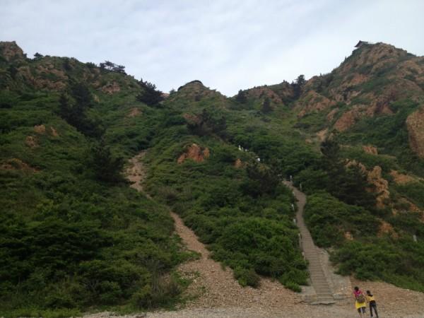 山东省旅游 长岛旅游攻略 长岛漫游   峰山林海,长岛的最高点了.