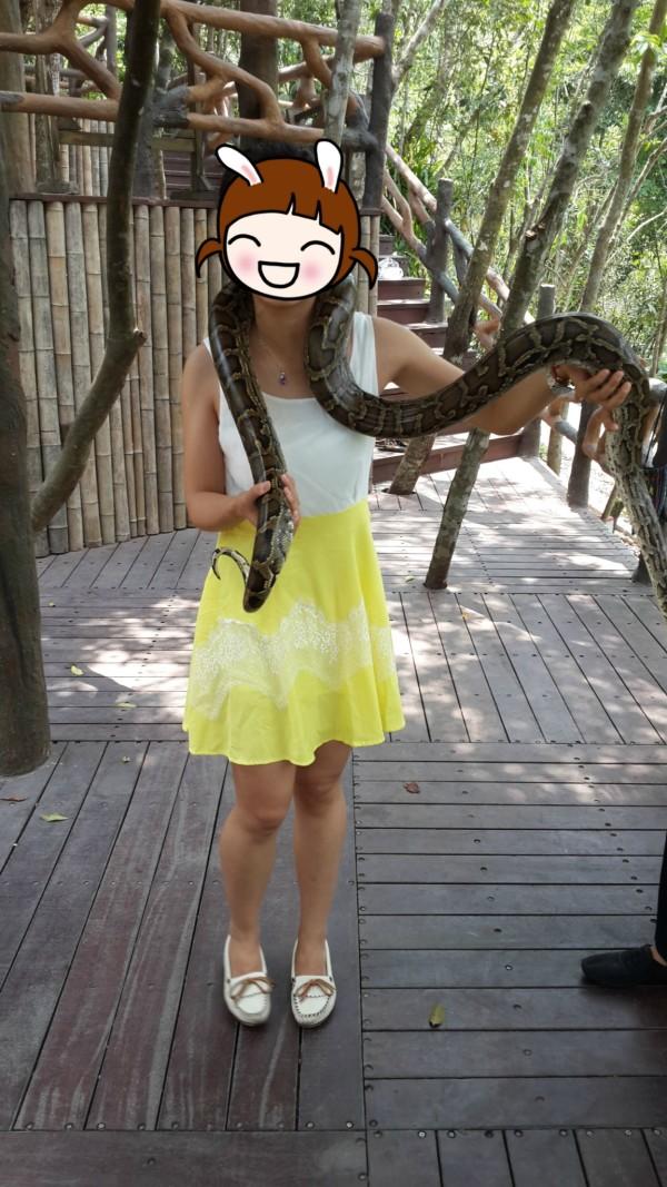 走下山了,路遇一只大蟒蛇,那就开森的合个影吧.