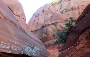 【靖边图片】波浪谷---萨拉乌素河沙漠峡谷