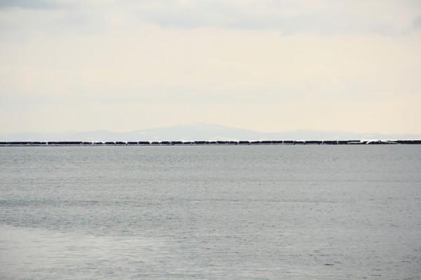 东京上野-函馆 早上在酒店用过早餐,根据JR指定席的时间7:38从东京上野站(ueno station)乘东北新干线()hayate或hayabusa)到新青森,换特急列车白鸟号,到函馆,一共将近6小时的车程。连接东日本的北海道的是津轻海峡,津轻海峡全长115公里,最狭处仅18.52公里,海峡中部宽广,约达55公里,航道最大深度521米,最小深度131米。新青森到函馆需要穿过津轻海峡的海底隧道,卫星信号消失,以至于APP六只脚无法准确画出我的行走路线。  上野站(ueno station)   新