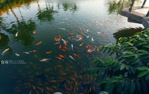 花莲娱乐-立川渔场