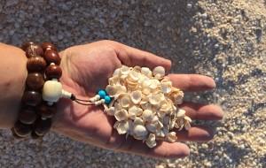 【珀斯图片】世界上最奢侈的海滩---西澳贝壳海滩!