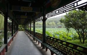 【萧山图片】八月萧山东方文化园游
