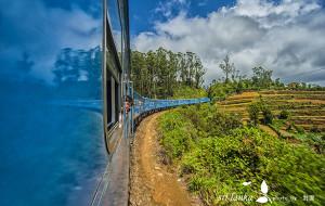 斯里兰卡娱乐-高山茶园火车(康提-努沃勒埃利耶-埃拉)