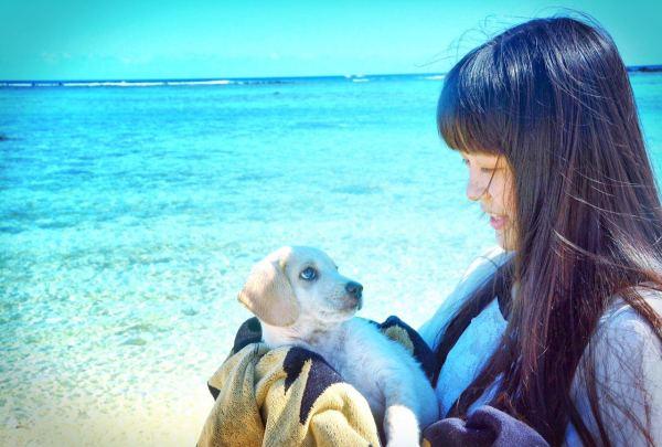 女生 毛里求斯/很难得在毛里求斯见到如此乖巧的小狗。
