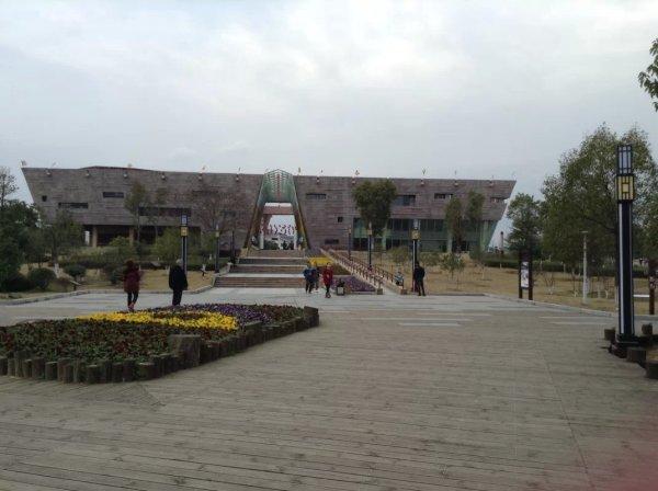 东乡县有多少人口_东乡人注意 每天有一群人出现在这里,过几天还有更想不到