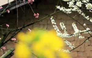 【乐昌图片】#消夏计划#中国最美的乡村之一——乐昌的九峰山