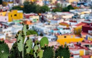【瓜纳华托图片】2015多彩墨西哥五 瓜纳华托 Guanajuato