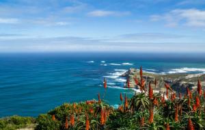 【开普敦图片】#消夏计划#非洲大陆南端的彩虹——开普敦