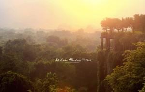【雅拉国家公园图片】带上前妻游兰卡——20天不一样的斯里兰卡(上)