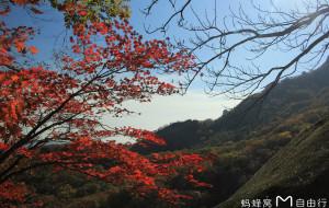 【宽甸图片】宽甸赏枫之旅