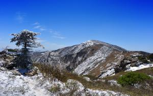 【柞水图片】◣九岳视界◥ 大雪裹秦岭,再上五月牛背梁